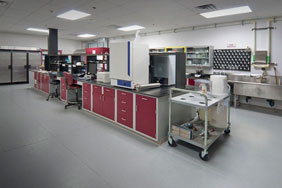 Bespoke Laboratory Furniture - Red Doors