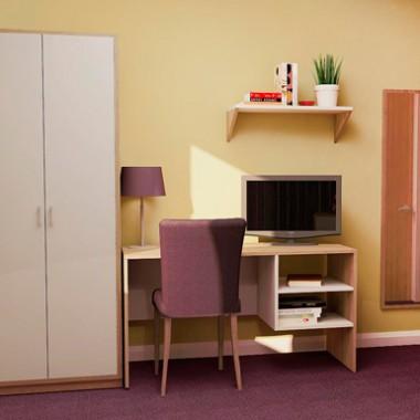 Iris - Healthcare Furniture Desk